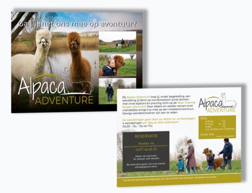 Flyer Alpaca Adventure