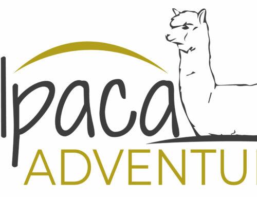 Logo Alpaca Adventure